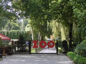 ZOO Kraków - wyjście